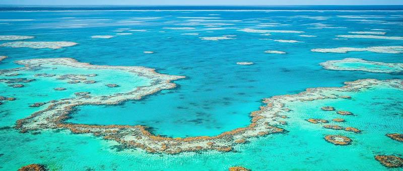 Hamilton Island, Great Barrier Reef, Queensland, Australia